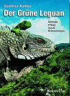 Foto: Grüner Leguan Biologie