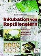 fachbuch: gunther koehler - Inkubation von Reptilieneiern - Zeitigung / Ausbrüten Leguan Eier mit 180 Farbfotos