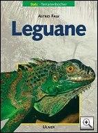 taschenbuch: leguane